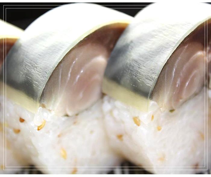 松前風とろ鯖寿司鯖すしさばすし押し寿司